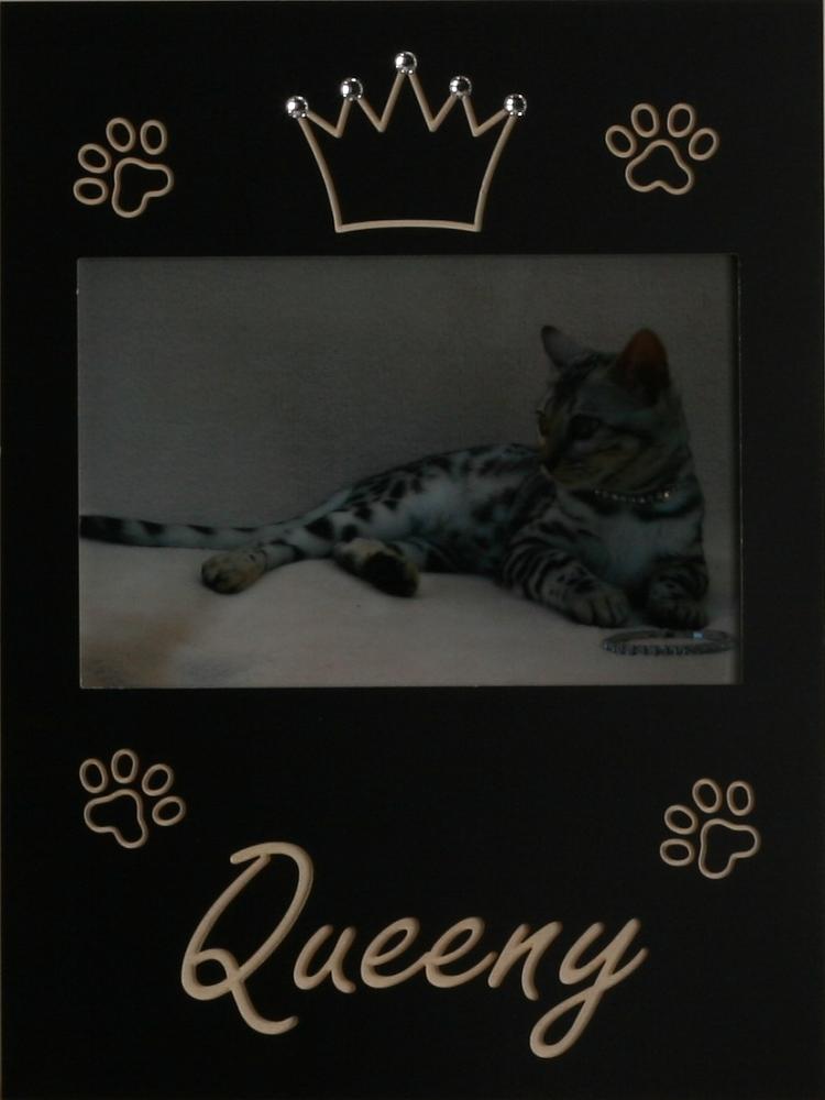 Katzen-Krönchen mit Swarovski