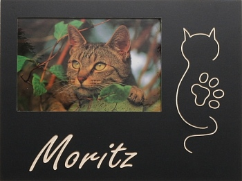 Katze mit Pfote oder Herz