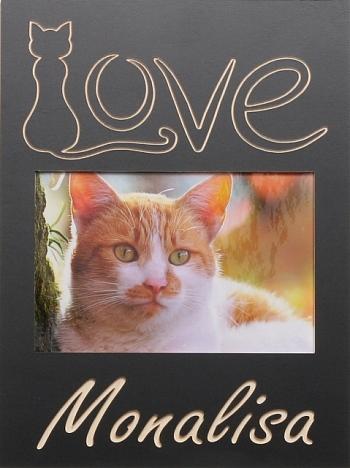 Love Katze