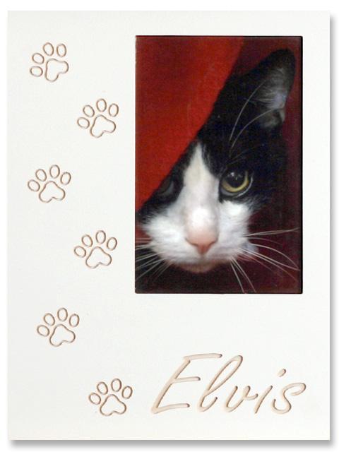 Katzenpfote Passepartou