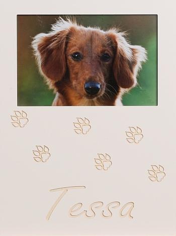 Hundepfoten 3
