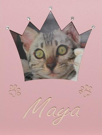 Katzen-Krone groß mit Swarovski