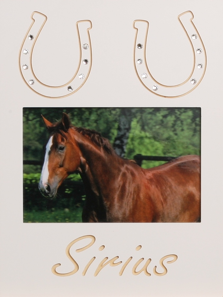 2 Hufeisen Mit Swarovski 544 Shop Startseite Hund Katze Pferd Co 18x24cm