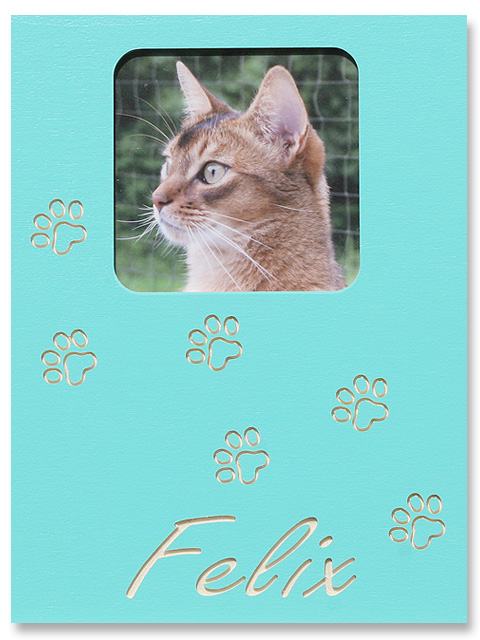 Katzenpfoten lang